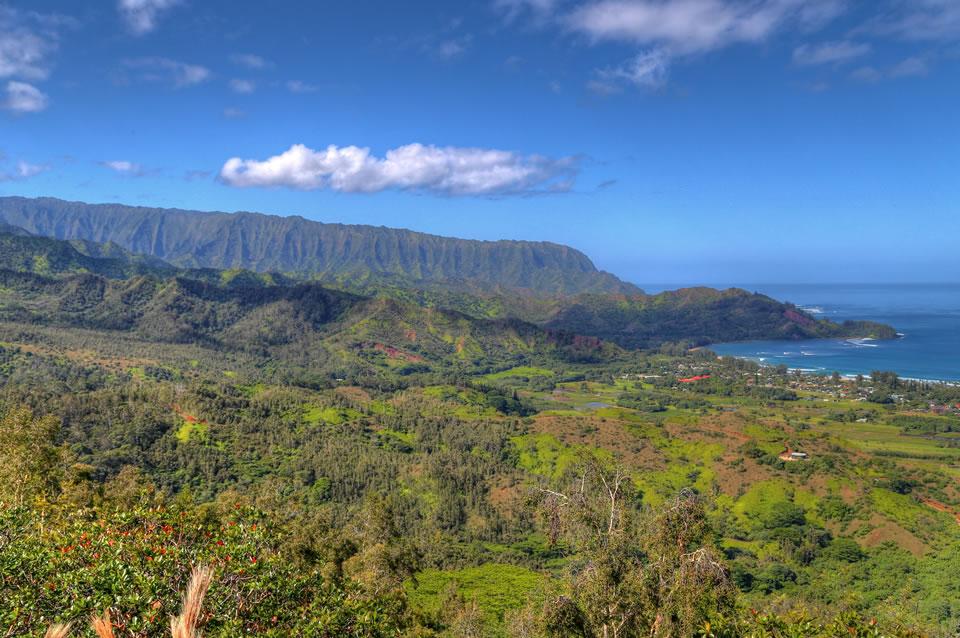 Hanalei bay from hike
